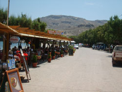 Kato Zakros Restaurants