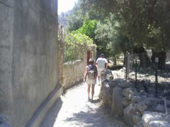 On the way to Agia Roumeli